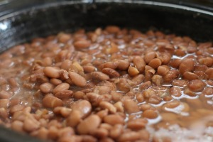 pinto-beans-356622_1920